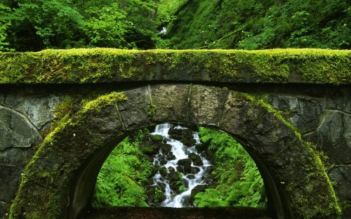 Moss_Covered_Old_Stone_Bridge_HD_Wallpaper-Vvallpaper.Net