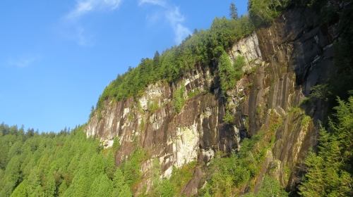 old-growth-cliff-2